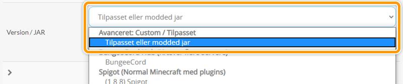 Vælg tilpasset eller modded jar i dit Minecraftpanel hos FlowServers